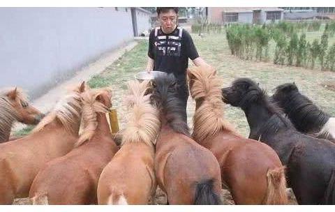 49岁于谦近照曝光,买京城4万平土地养马,19岁嫩妻被指是女儿