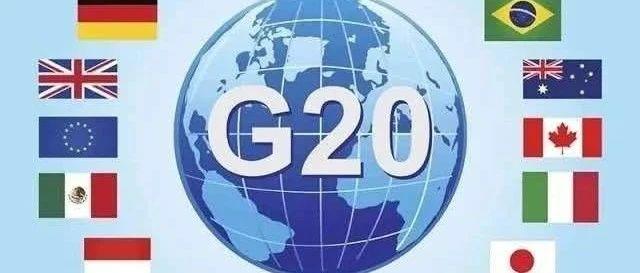 【睿评】G20应对新冠肺炎特别峰会召开 各国协同抗疫——盘古智库学者观点汇编