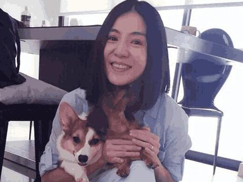 女神杨采妮简约家装曝光,恩爱20多年的夫妻,装修也很有爱