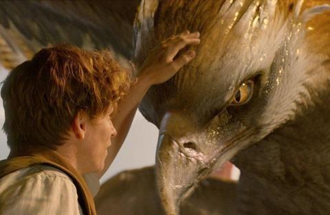 《神奇动物3》曝将会更加类似第一部,更多魔法怪物安排一下