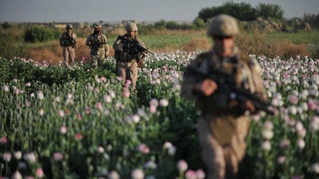 阿富汗政府军遭攻击,美军马上支援,特朗普忙着与塔利班拉私交