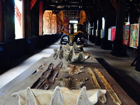 泰国最特殊的博物馆,陈列着各种动物标本,游客络绎不绝