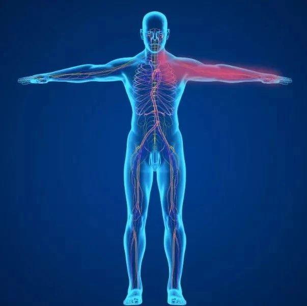 身体的语言:疼痛对照表