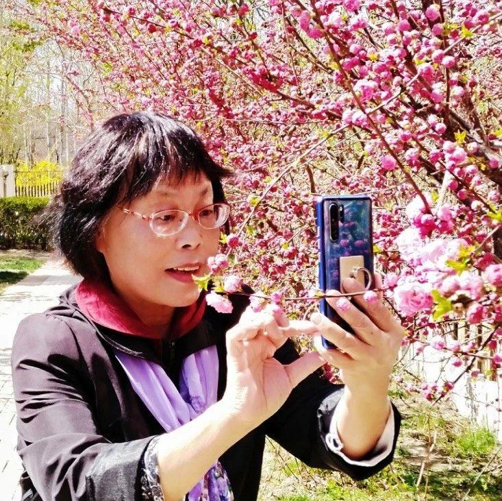 """人间最美四月天,手机拍花赛美颜?跟晚报界摄影大咖一起""""预备起"""""""