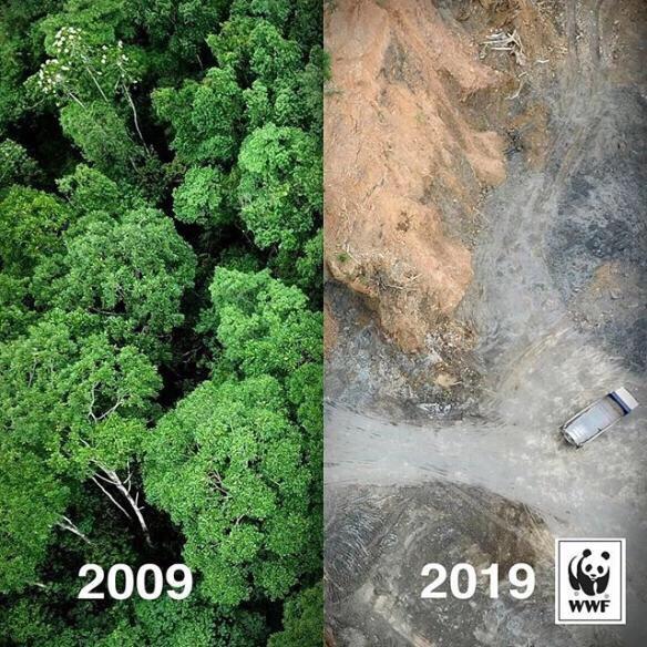 十年内地球的变化!太大了!引人深思,放过地球吧!