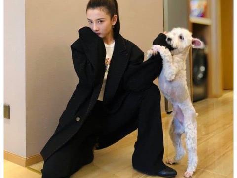 宋祖儿男友款黑色西装大秀S型好身材,与爱犬互动俏皮又可爱