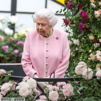 94岁女王贴身侍从确诊,英王室陷入恐慌:下一个会轮到谁?