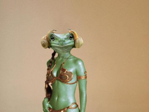 2只蜗牛爬上青蛙的头,一看以为公主头!网友们再次掀起修图大战