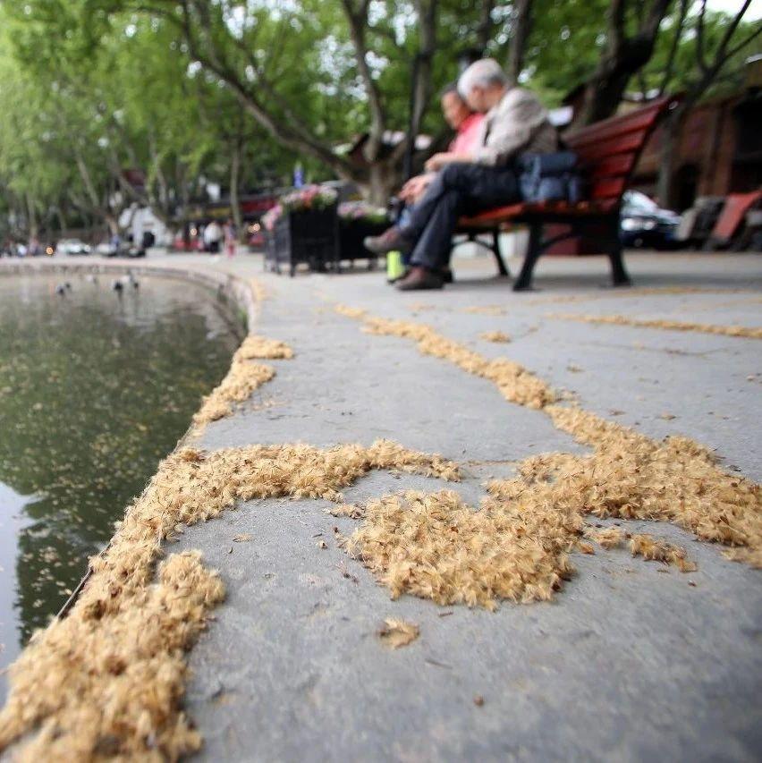 """注意!杭州的这种""""毛毛雨""""即将到来……这些路段尤其当心!"""