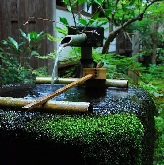 庭院惊鹿,让水流与禅心共存