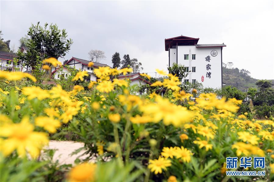 重庆渝北:整治人居环境 建设美好家园