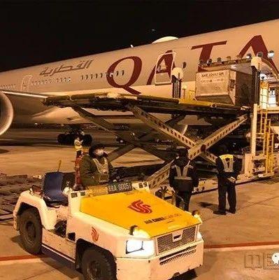 卡塔尔航空恢复中国六大航点腹舱货运服务