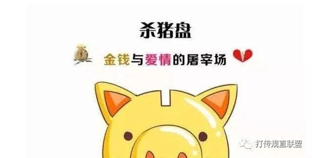 """""""杀猪盘""""里的温柔刀:博彩网站设温情陷阱诈骗近百万"""