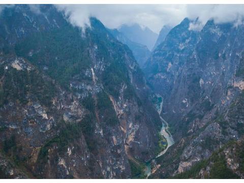 云南最具佛性的菩提,在悬崖绝壁3000年长一佛手,游客:佛祖保佑