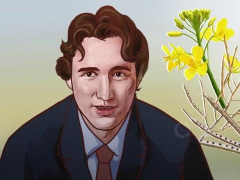 """加拿大表示:正试图与中国""""积极讨论"""",期望恢复对华出口油菜籽"""