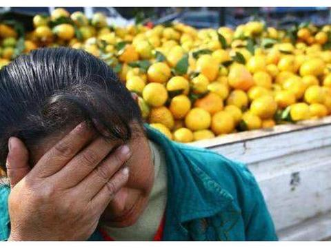 """毫无存在感的水果,果肉被农民当饲料,果皮反而成了致富""""宝贝"""""""