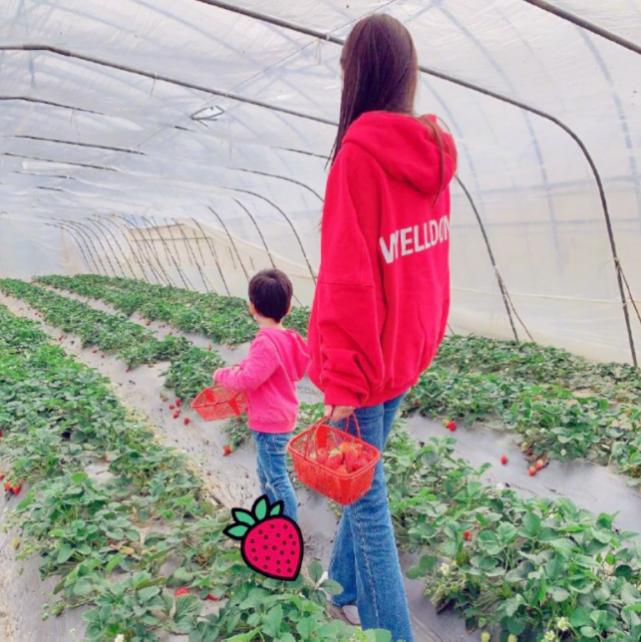 baby带儿子摘草莓母爱爆棚,小海绵与妈妈穿亲子装背影萌萌哒