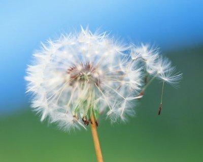 正能量语录:淡然面对幸运,笑着面对不顺,这才是人生。