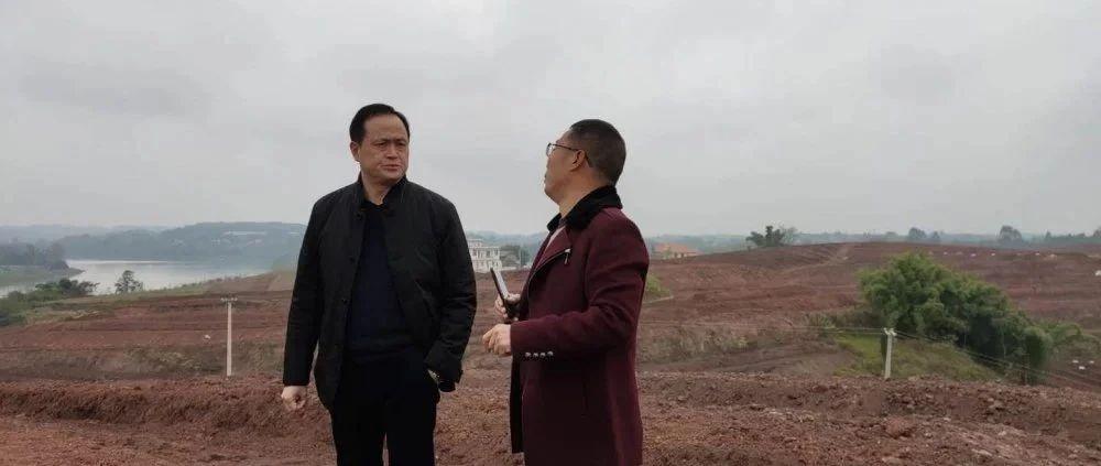 在撂荒地和再生稻中寻找增量——专访富顺县农业农村局局长胡世刚