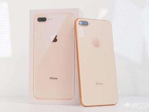 2019年还在用iPhone6,想换个手机,用惯了iOS系统,换哪款好点