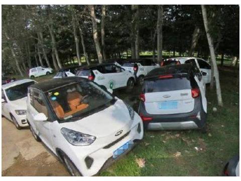 乱七八糟的小树林儿,好多共享汽车停在这里,车内还有不明液体