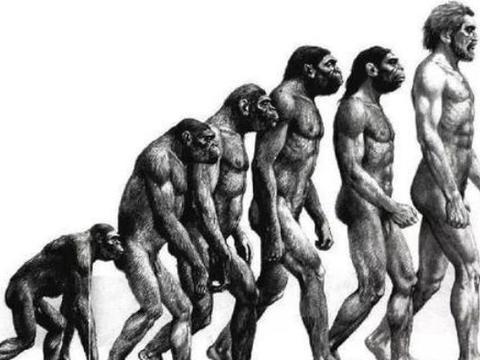人类起源再生争议,DNA存在嵌入修改痕迹,或许是被安排好的
