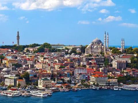 土耳其一城被誉为猫咪天堂,专门给猫起名铸雕塑