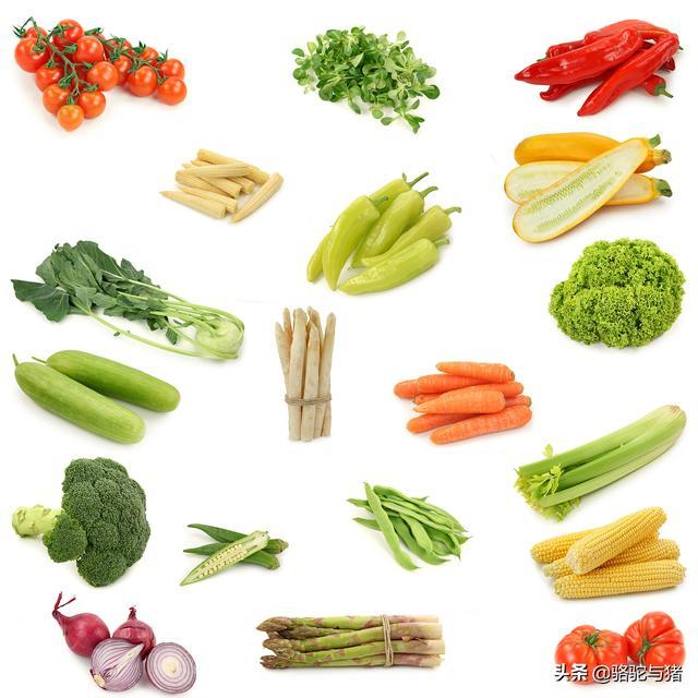 预防肥胖,早中晚餐怎么吃,进食顺序该如何,日常膳食10点建议