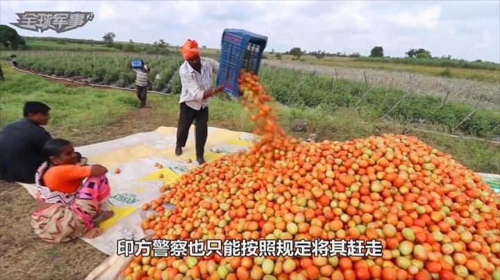 印度进入紧急状态,大量农产品无法运出,只能等待腐烂损失惨重