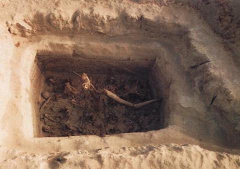 且末县墓葬出土一对奇形怪状之物,唐代女子的眉笔之谜,竟被破解