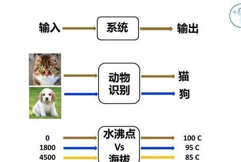 香港科大教授汪扬:一位数学家眼中的区块链技术