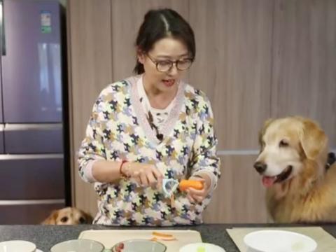 53岁周海媚伺候3只金毛洗衣做饭,单身女主与宠物相伴,其乐融融