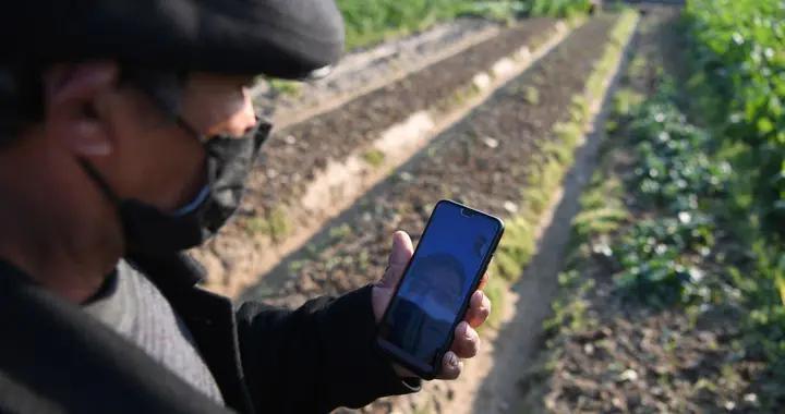 """育秧厂、传感器、监测站……农民种田用起这些""""新设施"""""""