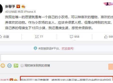 张馨予要接生15只小猪仔,唯一愿望曝光很意外,网友:不拍戏了?