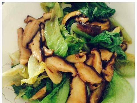 美食推荐:蚝油香菇生菜,番茄豆,烧茄夹,莴笋炒鸡肉的做法