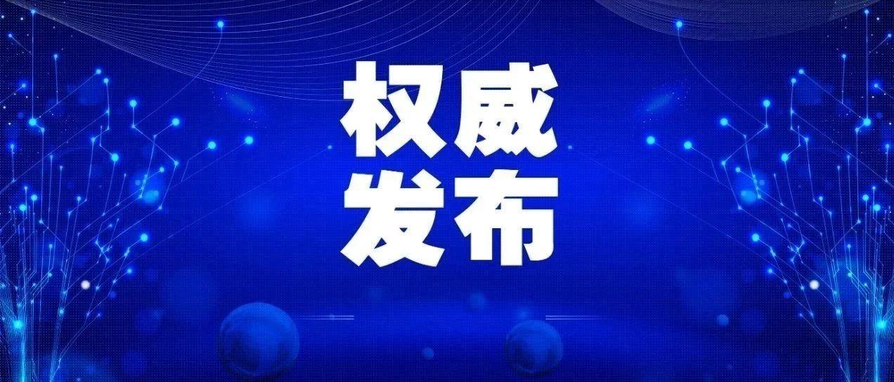 新冠肺炎疫情防控海外华人华侨互联网咨询平台启动
