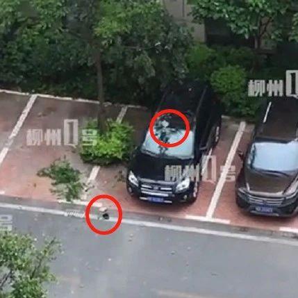 小E丰田多车被砸,柳州一大厦3小时坠落3次砖!一抬头...还有!