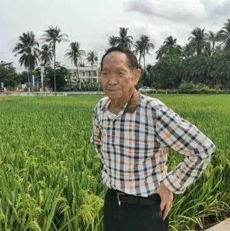 """袁隆平:中国不会出现""""粮荒"""" 完全能够自给自足"""
