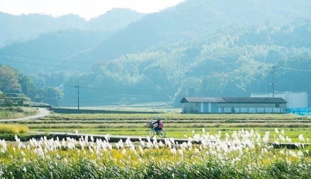 """搬回乡下的日本主妇,凭什么把眼前的生活,过成了""""诗与远方"""""""