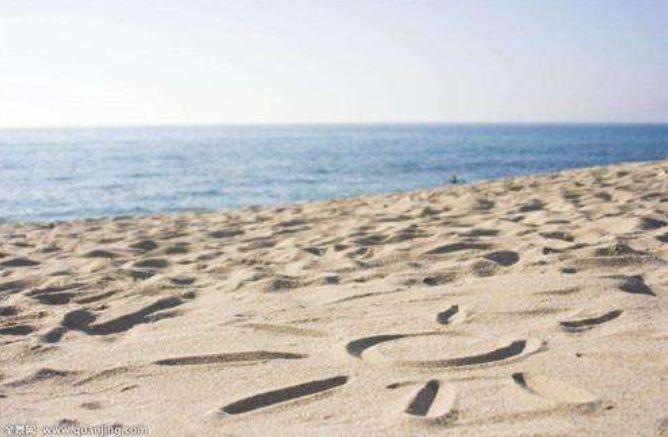 """""""食石虫""""被科学家抓到,排泄物是沙子,专门吃石头!"""