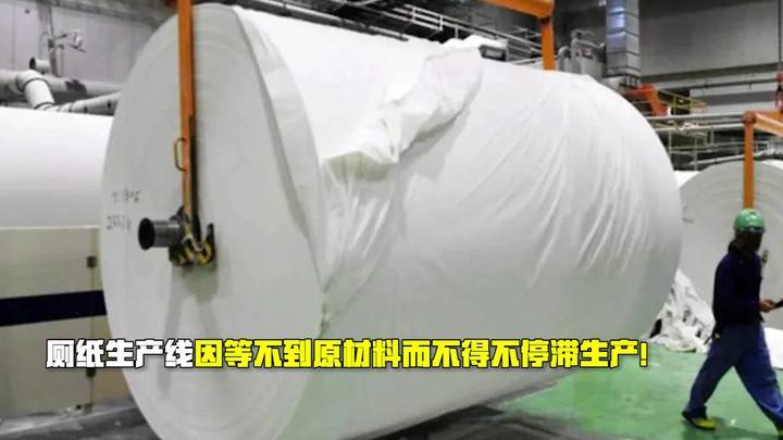 厕纸危机真的来了!纸浆原料无法流通 ,欧洲人这回真的要哭了!