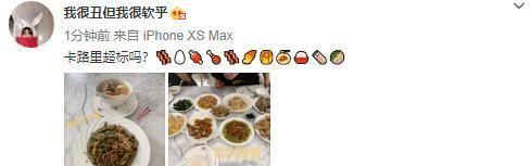 张子萱晒日常饮食,处于哺乳期的她饭量惊人