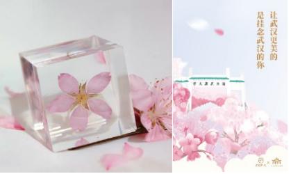 网易严选发起樱花公益活动 一切如常才是生活理想