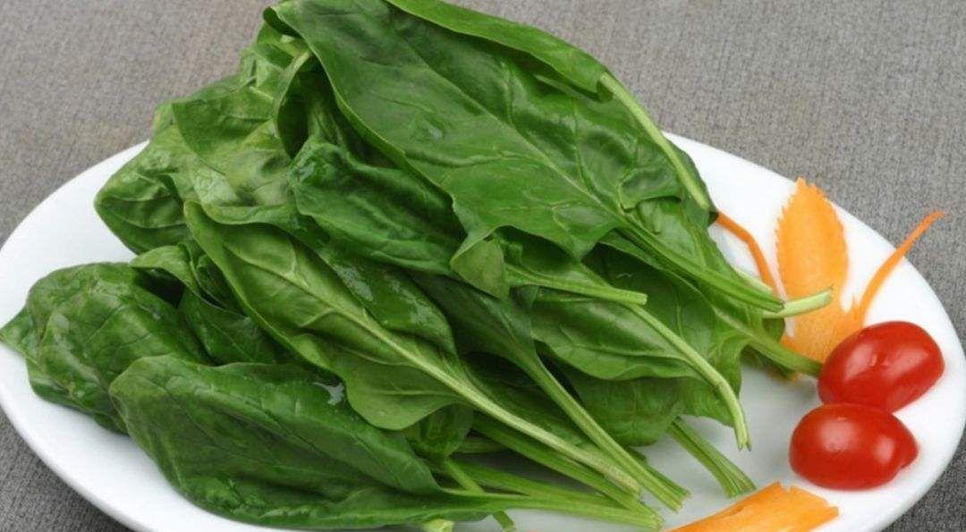 菠菜是这样吃产后便秘 产后养血和治疗 营养学家
