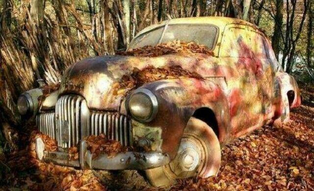 男子郊外发现破旧汽车,靠近后听见有声响,割开轮胎后惊喜了