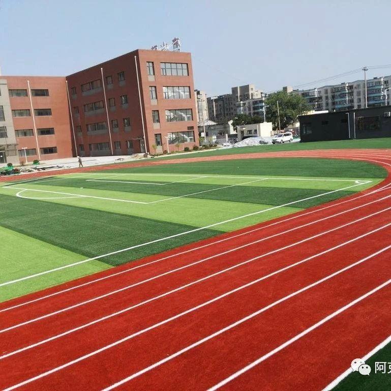 地区社体中心体育场田径场草坪改造升级