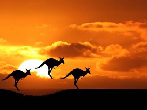 澳大利亚也好转了,全世界恢复还远么