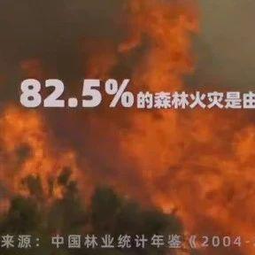 小珠山火灾原因查明!还有一个悲剧发生……森林防火,你我共同的责任!