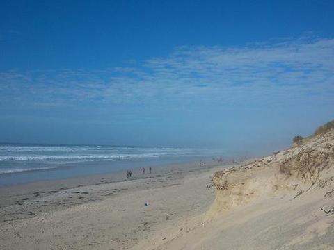 加州州长纽瑟姆将宣布关闭州内全部海滩。警告:病毒不过周末