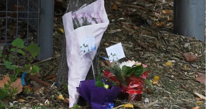 澳大利亚新州:仅增3例 西悉尼养老院疫情仍未平息
